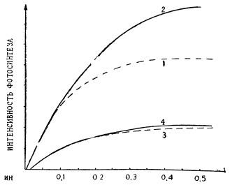 Световые кривые фотосинтеза растений с активным и малоактивным фотосинтетическим аппаратом
